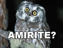 AMIRITE