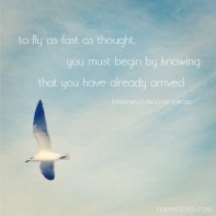 dulyposted_seagull_quote1-610x610