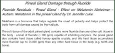 Fluoride_text1