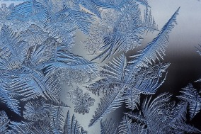 Frost_patterns_2