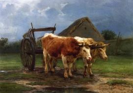 Oxen Pu ll ing a CaRt Rosa BonheuR