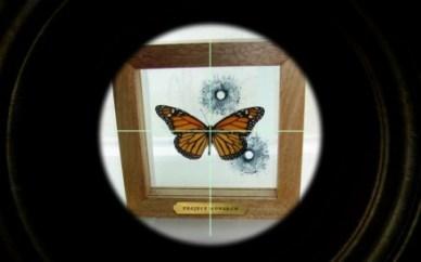 project-monarch-scope
