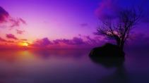 purp le -sunset-11792