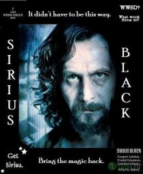 sirius-quotes-sirius-black-28701127-522-633