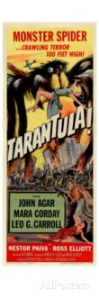 tarantula-1955