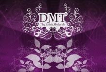 The-Spirit-Molecule-Dr.-Rick-Strassmans-Human-DMT-research-as-the-documentarys-backbone.