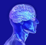 top10_phenomena_mind_body_02